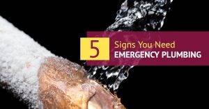 Signs You Need Emergency Plumbing
