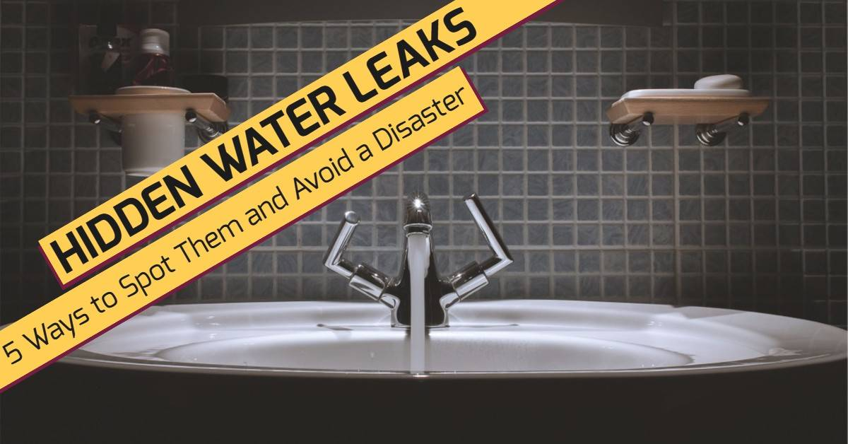 Hidden Water Leaks: 5 Ways to Spot Them and Avoid a Disaster