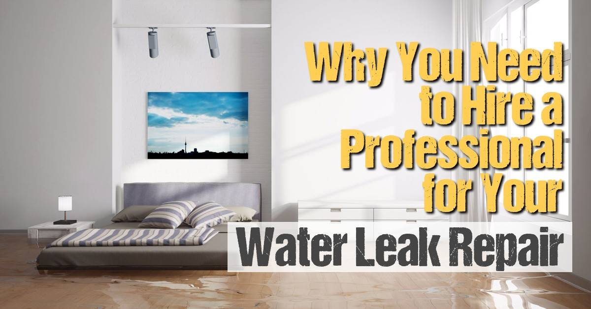 Why You Need to Hire a Professional for Your Water Leak Repair