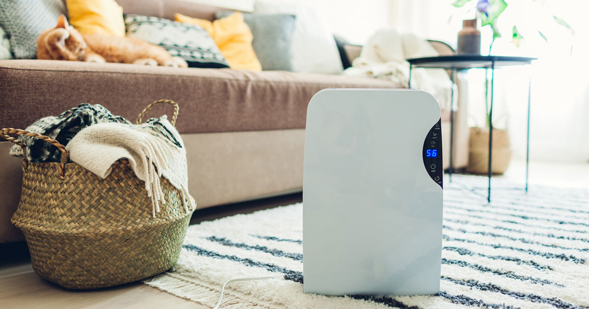 Easily Learn How A Dehumidifier Could Improve The Air Quality Within Your Home
